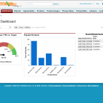 Salesforce eCommerce analytics reports dashboards